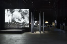 Curator's Tour: Joan Jonas
