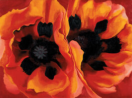 O'Keeffe: Oriental Poppies