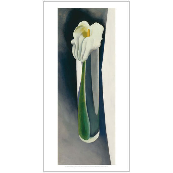 Georgia O'Keeffe Calla Lily in Tall Glass - No. 2 (50 x 100 poster)