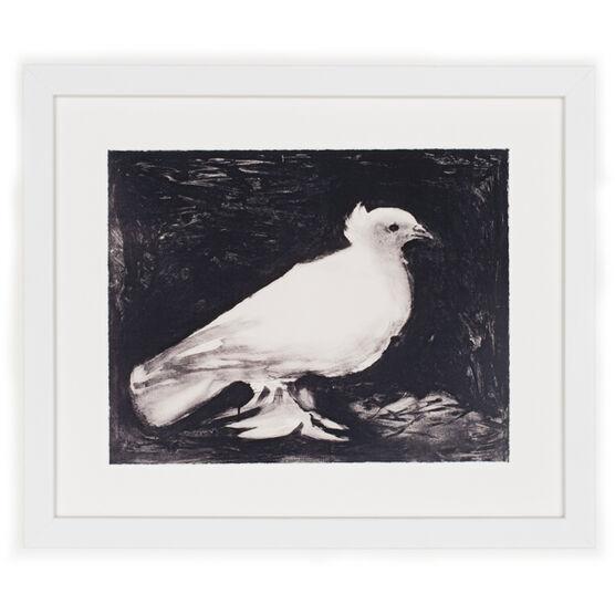 Picasso Dove (framed print)
