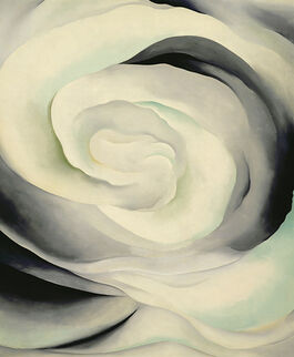 O'Keeffe: Abstraction White Rose