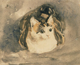 John: Cat