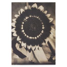 A Bee on a Sunflower A6 jotter