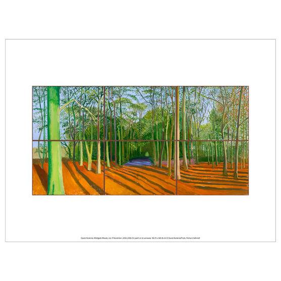 David Hockney Woldgate Woods, 6 & 9 November 2006 (exhibition print)