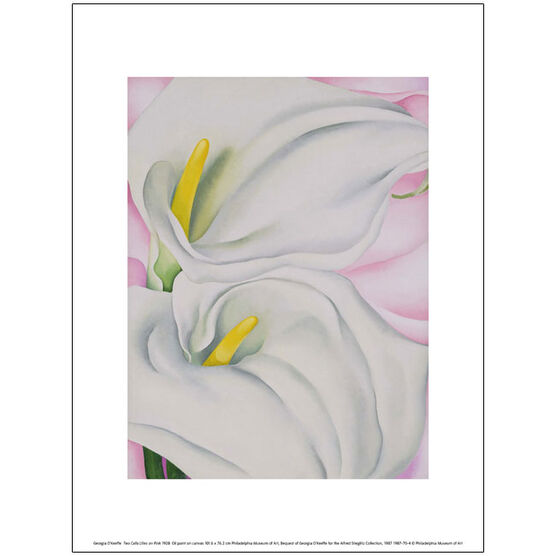 Georgia O'Keeffe Two Calla Lilies on Pink (exhibition print)