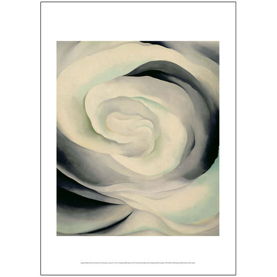 Georgia O''Keeffe Abstraction White Rose (50 x 70 poster)