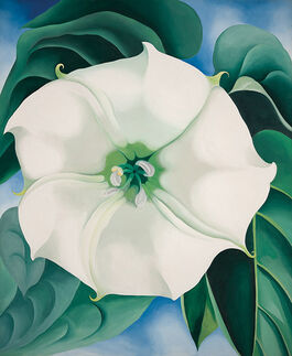 O'Keeffe: Jimson Weed, White Flower No.1