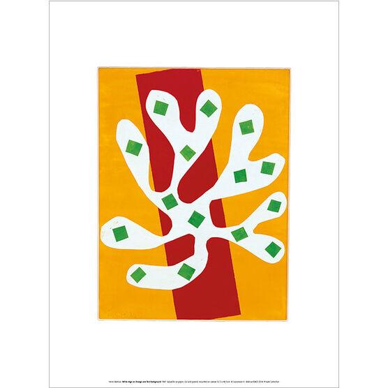Henri Matisse White Alga on Orange and Red Background (exhibition print)