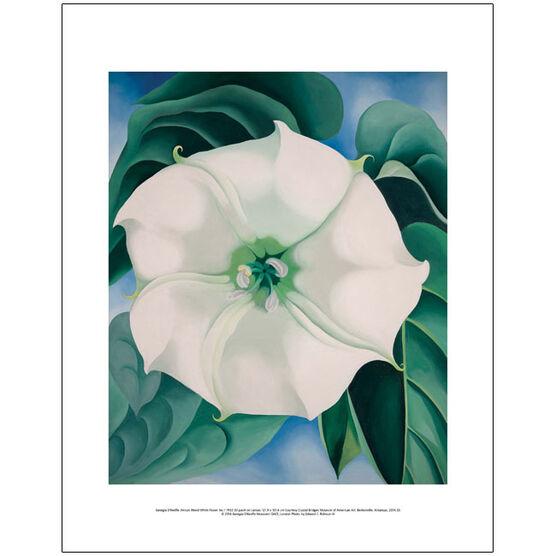 Georgia O'Keeffe Jimson Weed, White Flower No.1 (mini print)