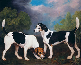 George Stubbs: Couple of Foxhounds
