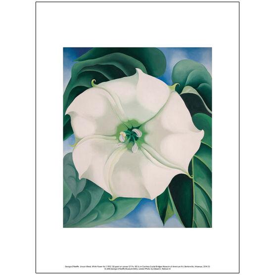 Georgia O'Keeffe Jimson Weed, White Flower No.1 (exhibition print)