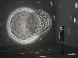 Curator's Introduction: Olafur Eliasson