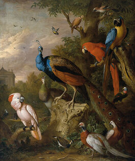 Jakob Bogdány: Peacocks and Other Exotic Birds