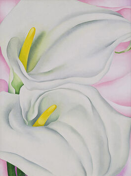 O'Keeffe: Two Calla Lilies on Pink