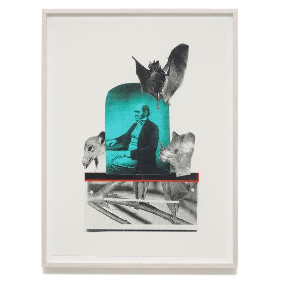 Monster Chetwynd, Charles Darwin, 2020 (framed)