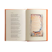 William Blake Songs of Innocence and of Experience
