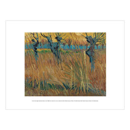 Vincent van Gogh: Pollarded Willows, Arles exhibition print