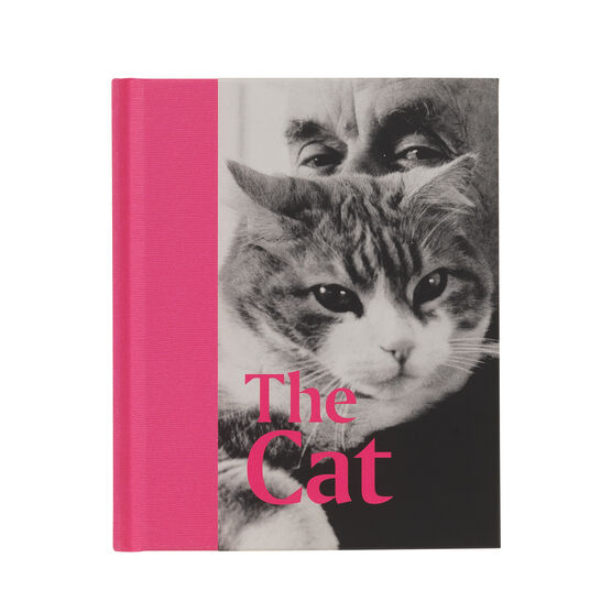 Signed edition of The Cat front cover