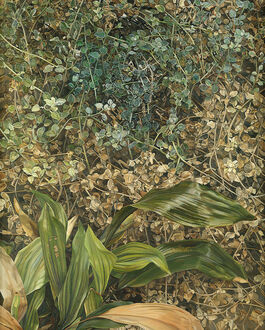 Lucian Freud: Two Plants