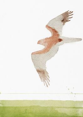 Elisabeth Frink: Marsh Harrier