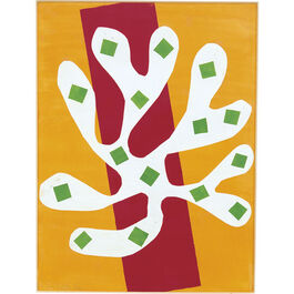 Matisse: White Alga on Orange and Red