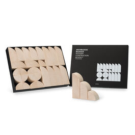 Bauhaus wooden construction game