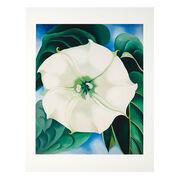 Georgia O'Keeffe Jimson Weed, White Flower No.1 (Folio)