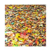 David Shrigley Leaf silk scarf