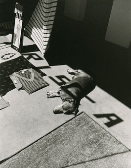 Dorothy Bohm: Paris