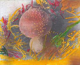 Polke: Untitled (Mushroom)