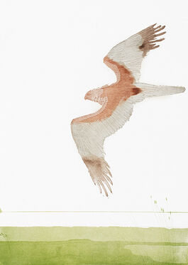Elisabeth Frink: Marsh Harrier
