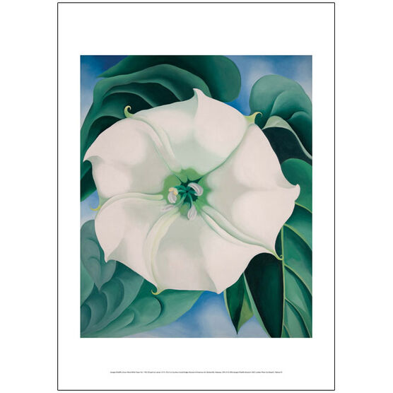 Georgia O'Keeffe Jimson Weed, White Flower No.1 poster
