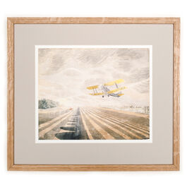 Ravilious Tiger Moth (framed print)
