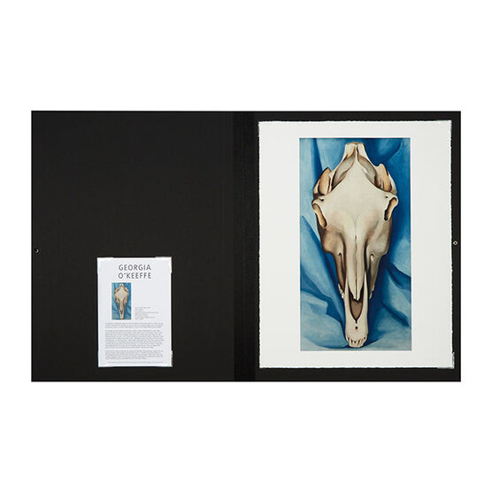 Georgia O'Keeffe Horse Skull on Blue (Folio)