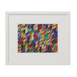 Bridget Riley Nataraja (framed print)