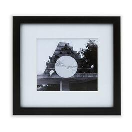 Shrigley Untitled/Pigeons (framed print)