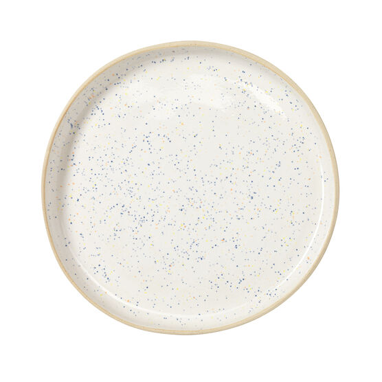 Large Plate Speckled - Riv & Read