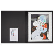 Pablo Picasso: Nude Woman in a Red Armchair folio