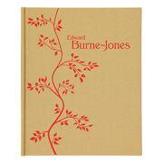 Edward Burne-Jones exhibition book (hardback)