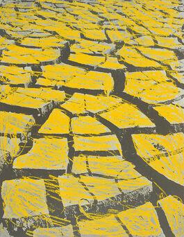 Menashe Kadishman: Cracked Earth A