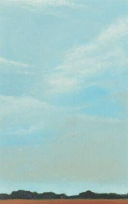 Lisa Milroy: Sky