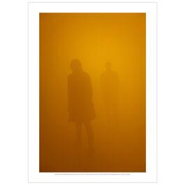 Olafur Eliasson: Din blinde passenger, 2010 poster