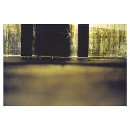 Richard Billingham Arrow