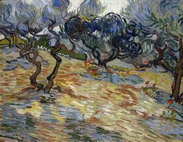 Vincent van Gogh: Olive Trees