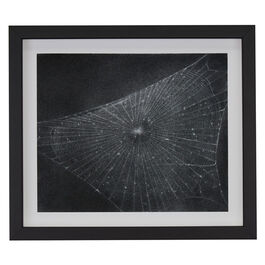 Vija Celmins Web #1 (framed print)