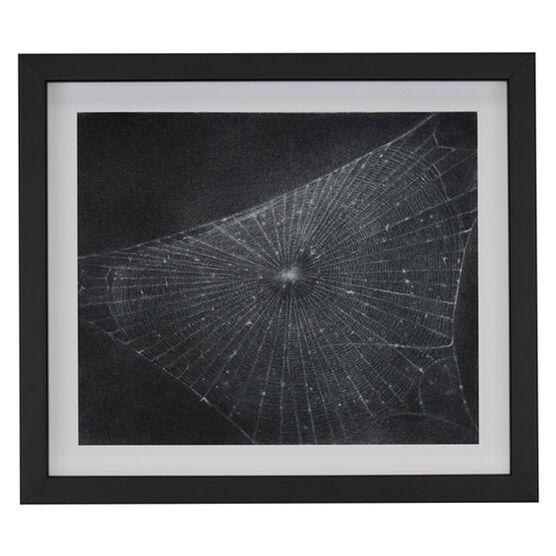 Vija Celmins Web #1 (framed print)