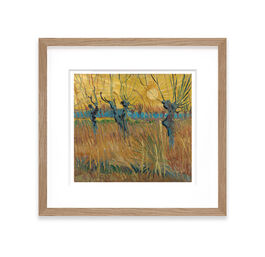 Vincent van Gogh: Pollarded Willows, Arles framed print