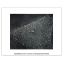 Vija Celmins Web #1 (unframed print)