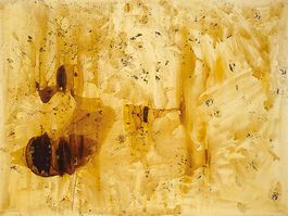Polke: The Spirits that Lend Strength are Invisible V (custom prints)