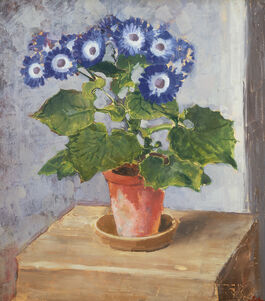 Augustus John: Blue Cineraria